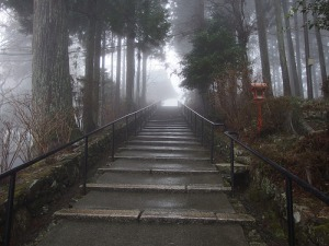 stairs walking up a mountain,  symbolizing success or hard work