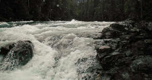 raging river with rapids