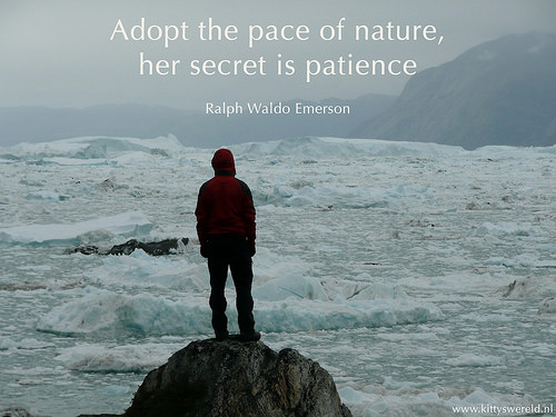 Patience – A Poem About Waiting and Trusting in God's Timing
